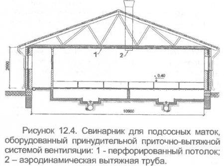 Схема навозоудаления с свинарника