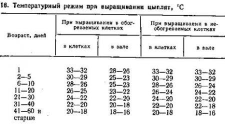 Что дает сокращение срока выращивания бройлеров 91