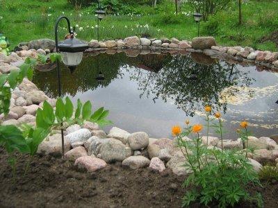 Как устроить искусственный водоём в собственном саду