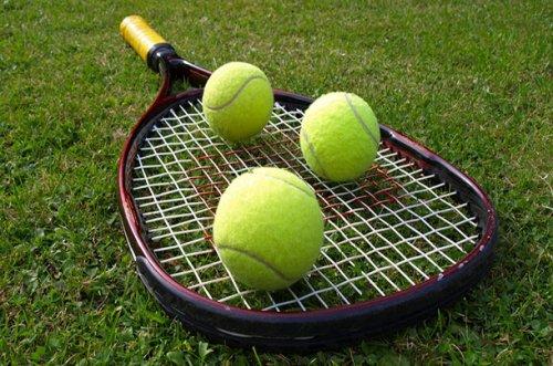 Спортивные ставки на теннис. Как поймать удачу за хвост?
